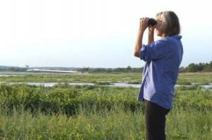 The Author Surveys Jamaica Bay's Marshes for Wading Birds © Janet Jensen