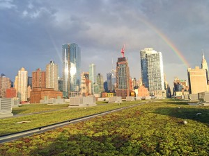 Javits K. Javits Convention Center Green Roof, One of the Largest Green Roofs in the Country